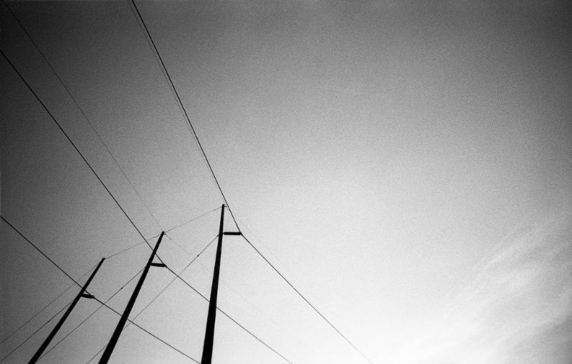 Power Lines in New Market Maryland black and white film photography